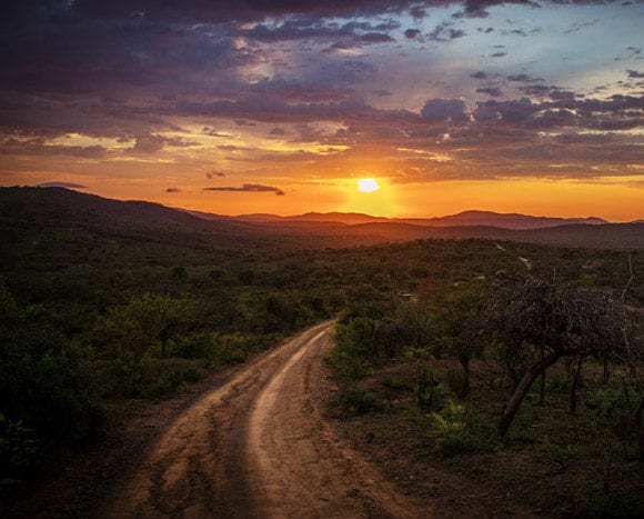 5 Things You Didn't Know About South Africa