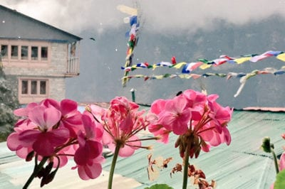 8 Things They Don't Tell You About the Everest Base Camp Trek