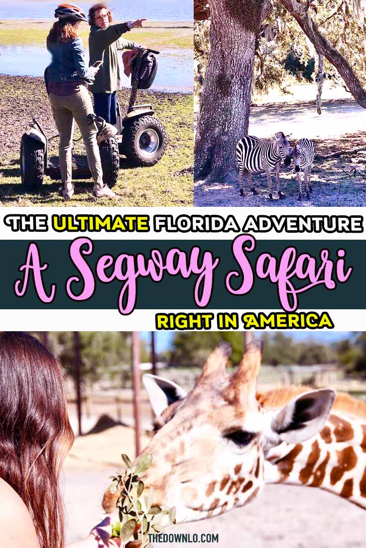 Make your bucket list Florida vacation a dream come true - a Segway Safari right in America to feed giraffes. Things to do in Florida beyond the beaches and Disney World perfect for animal lovers, families and those traveling with kids. Great photography and picture ideas for a road trip near central Tampa and Clearwater. Activities for Instagram and fun things with friends for memorable family trips and tips. #florida #pasco #safari #giraffe